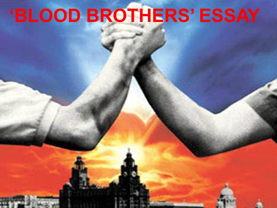 blood brothers essay
