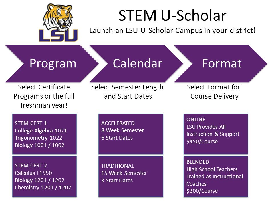 STEM U-Scholar Launch an LSU U-Scholar Campus in your district.
