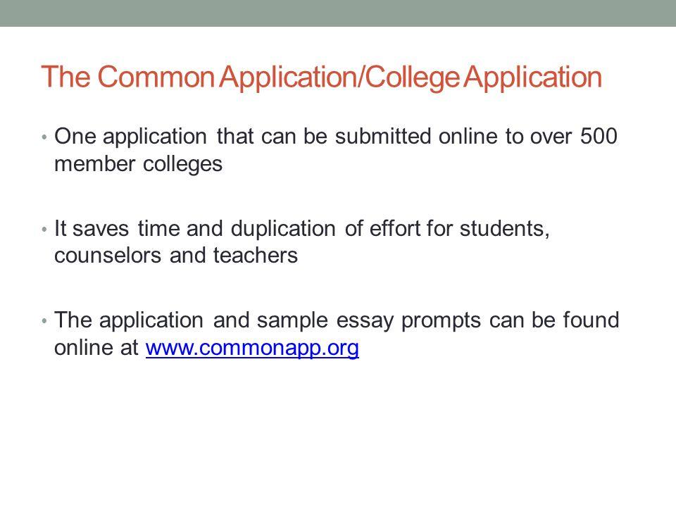 application common essay question