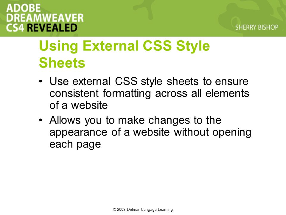 © 2009 Delmar Cengage Learning Using External CSS Style Sheets Use external CSS style sheets to ensure consistent formatting across all elements of a website Allows you to make changes to the appearance of a website without opening each page