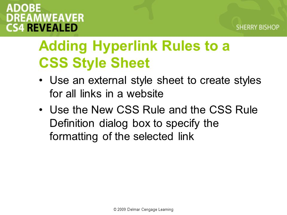 © 2009 Delmar Cengage Learning Adding Hyperlink Rules to a CSS Style Sheet Use an external style sheet to create styles for all links in a website Use the New CSS Rule and the CSS Rule Definition dialog box to specify the formatting of the selected link