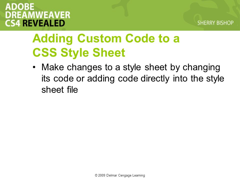 © 2009 Delmar Cengage Learning Adding Custom Code to a CSS Style Sheet Make changes to a style sheet by changing its code or adding code directly into the style sheet file