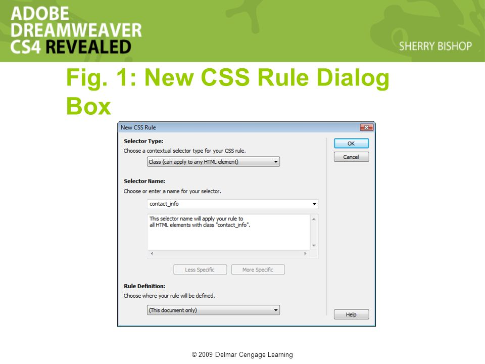 © 2009 Delmar Cengage Learning Fig. 1: New CSS Rule Dialog Box