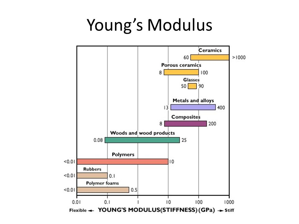 Engineering Practicum Baltimore Polytechnic Institute M. Scott Young's Modulus