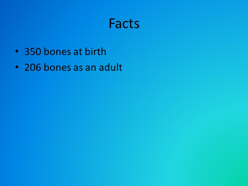 Facts 350 bones at birth 206 bones as an adult