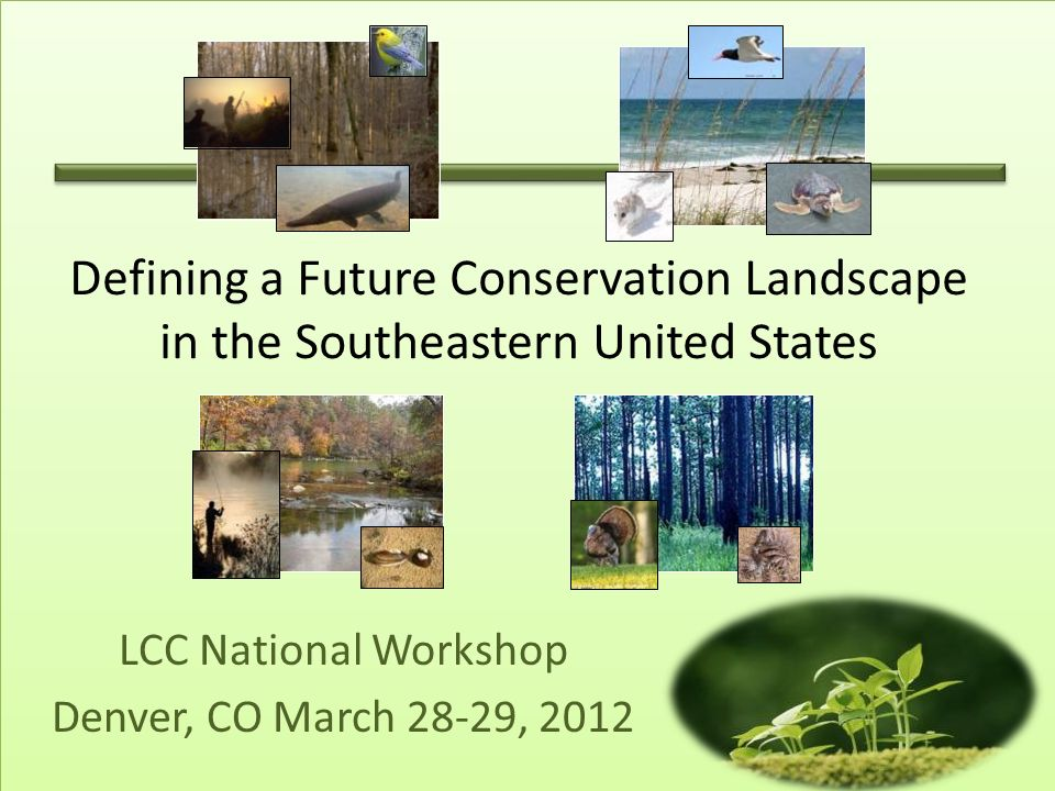 LCC National Workshop Denver, CO March 28-29, 2012 Defining a Future Conservation Landscape in the Southeastern United States