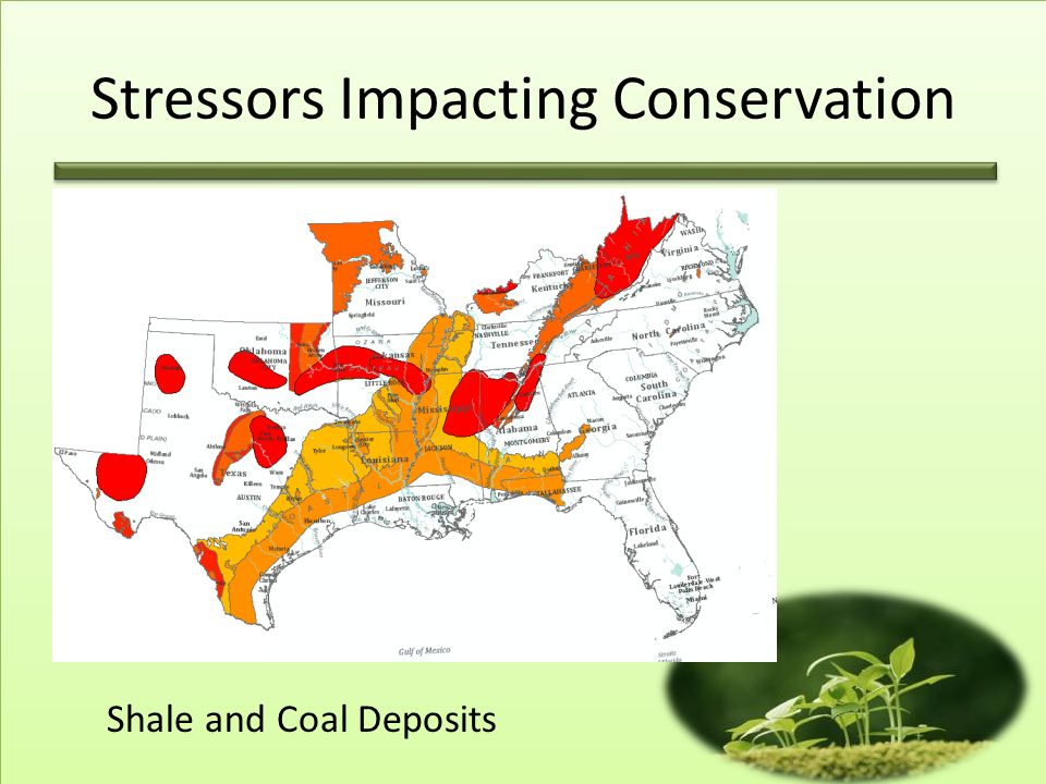 Stressors Impacting Conservation Shale and Coal Deposits