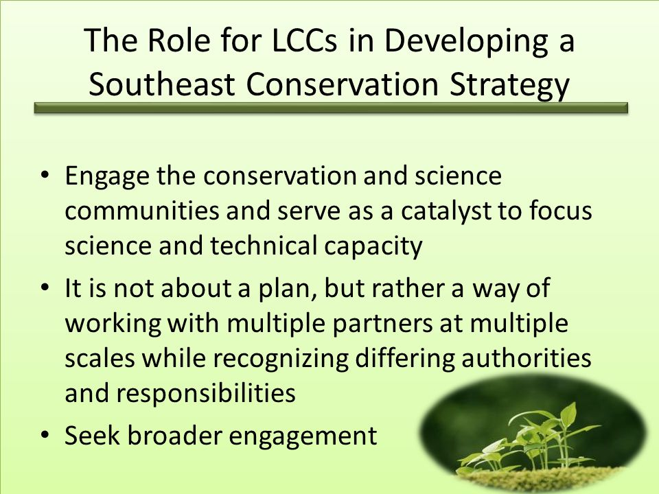 The Role for LCCs in Developing a Southeast Conservation Strategy Engage the conservation and science communities and serve as a catalyst to focus science and technical capacity It is not about a plan, but rather a way of working with multiple partners at multiple scales while recognizing differing authorities and responsibilities Seek broader engagement