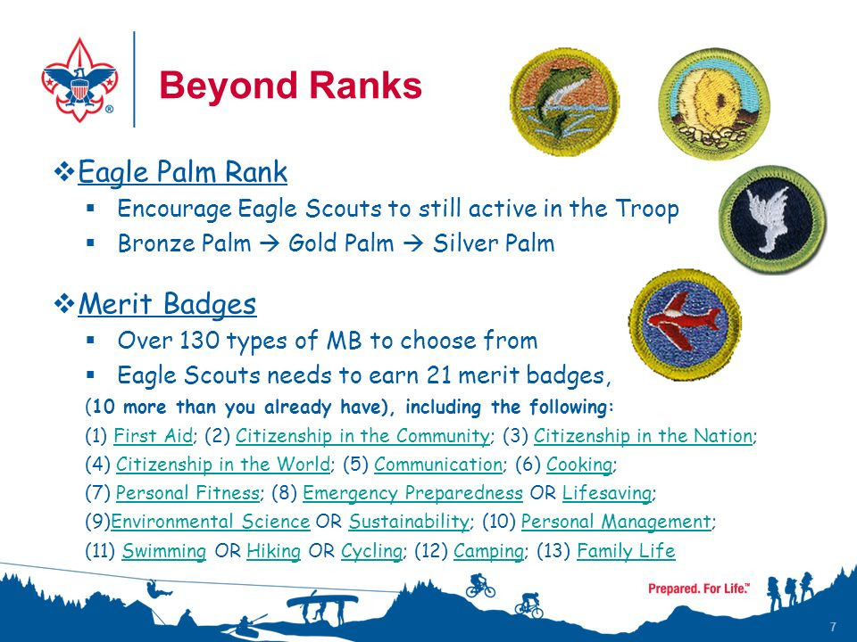  Eagle Palm Rank  Encourage Eagle Scouts to still active in the Troop  Bronze Palm  Gold Palm  Silver Palm  Merit Badges  Over 130 types of MB to choose from  Eagle Scouts needs to earn 21 merit badges, (10 more than you already have), including the following: (1) First Aid; (2) Citizenship in the Community; (3) Citizenship in the Nation;First AidCitizenship in the CommunityCitizenship in the Nation (4) Citizenship in the World; (5) Communication; (6) Cooking;Citizenship in the WorldCommunicationCooking (7) Personal Fitness; (8) Emergency Preparedness OR Lifesaving;Personal FitnessEmergency PreparednessLifesaving (9)Environmental Science OR Sustainability; (10) Personal Management;Environmental ScienceSustainabilityPersonal Management (11) Swimming OR Hiking OR Cycling; (12) Camping; (13) Family LifeSwimmingHikingCyclingCampingFamily Life 7 Beyond Ranks 7
