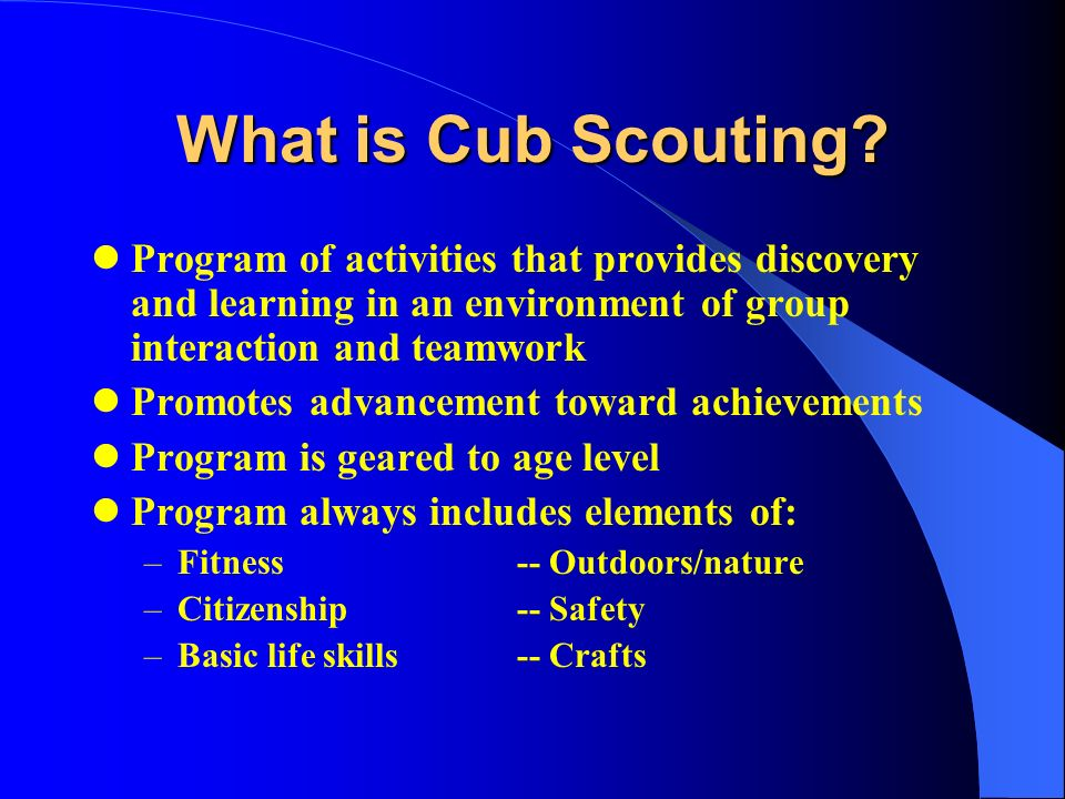 scout for boys