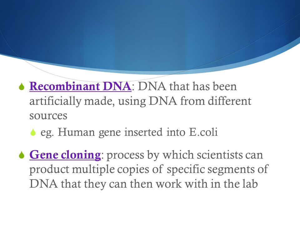  Recombinant DNA : DNA that has been artificially made, using DNA from different sources  eg.