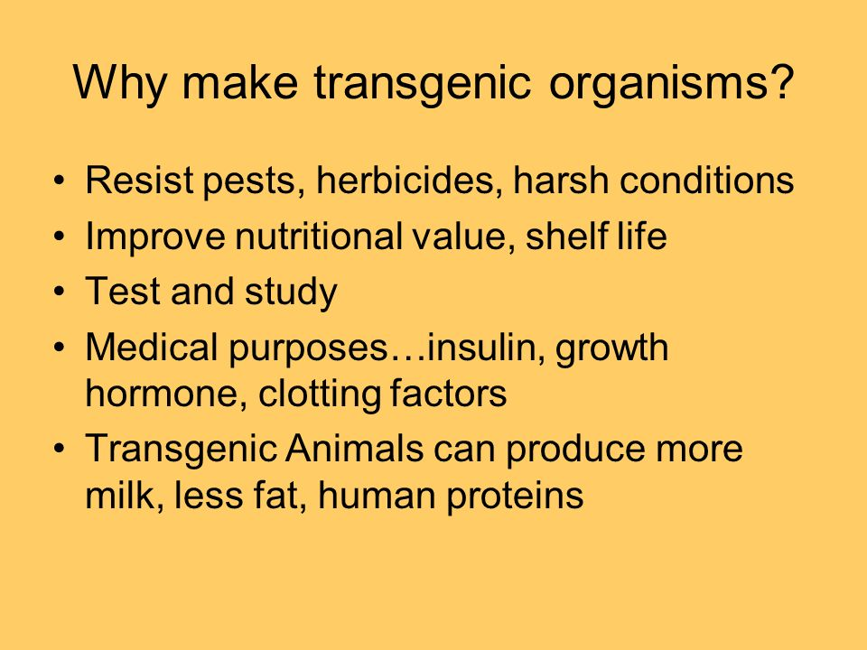 Why make transgenic organisms.