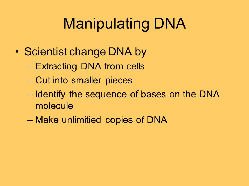 Manipulating DNA Scientist change DNA by –Extracting DNA from cells –Cut into smaller pieces –Identify the sequence of bases on the DNA molecule –Make unlimitied copies of DNA