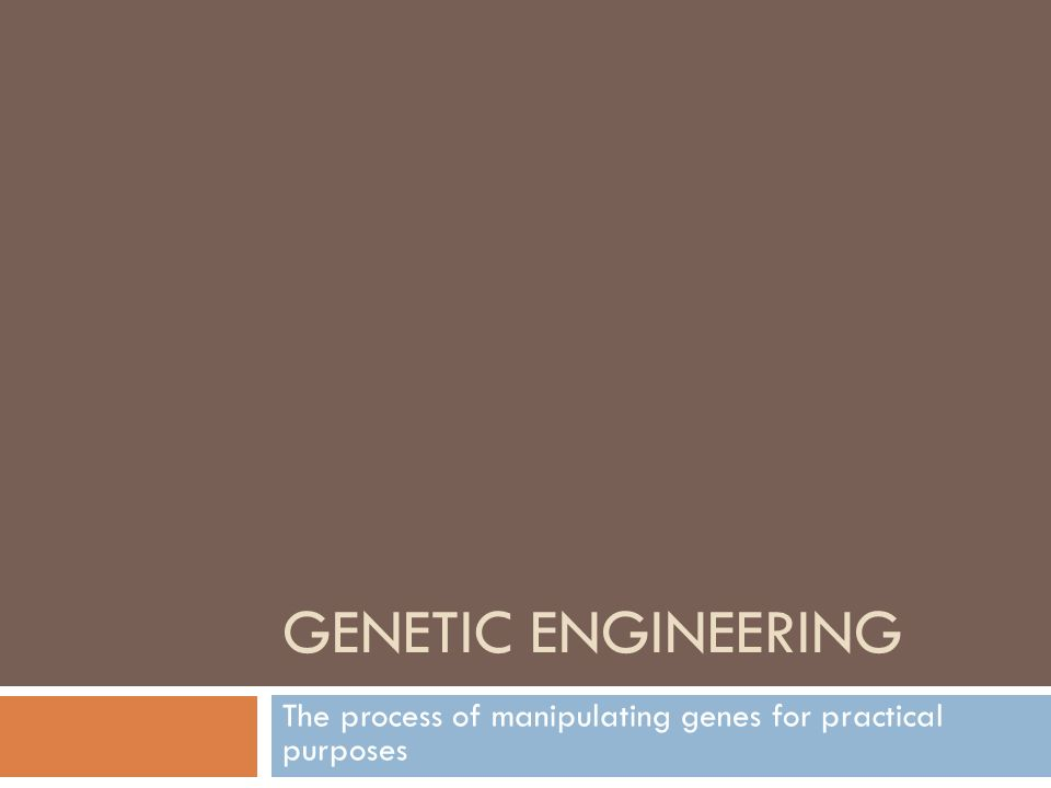 GENETIC ENGINEERING The process of manipulating genes for practical purposes