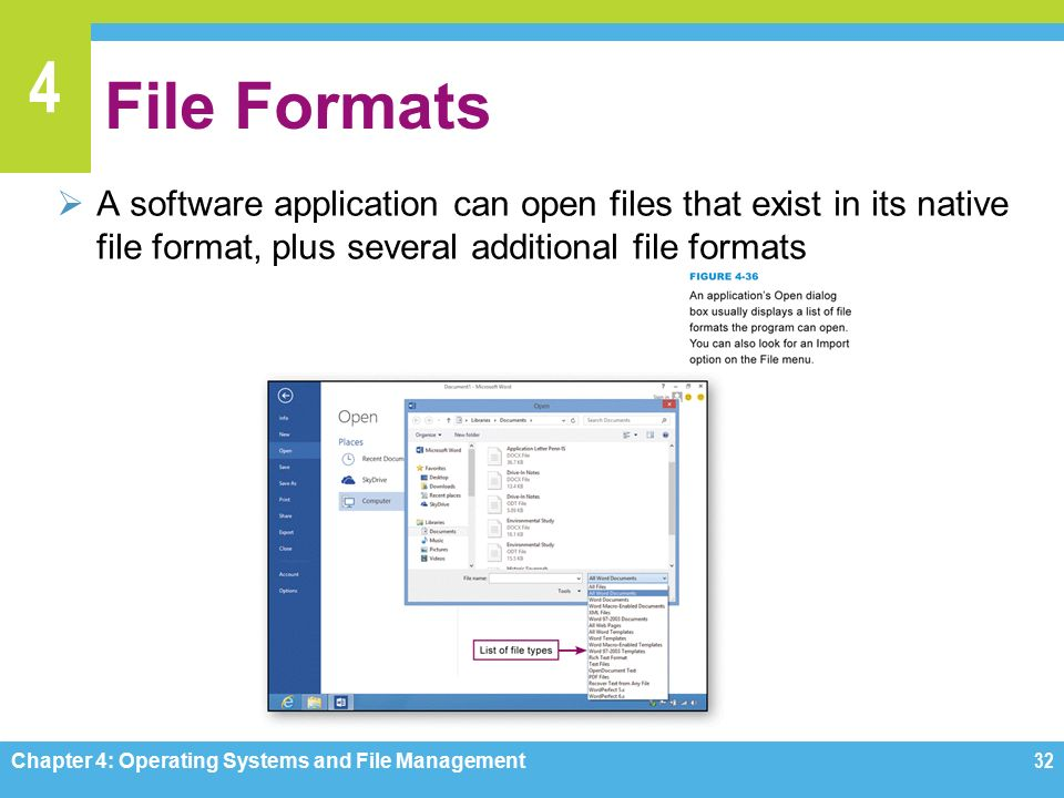 4 File Formats  A software application can open files that exist in its native file format, plus several additional file formats Chapter 4: Operating Systems and File Management32