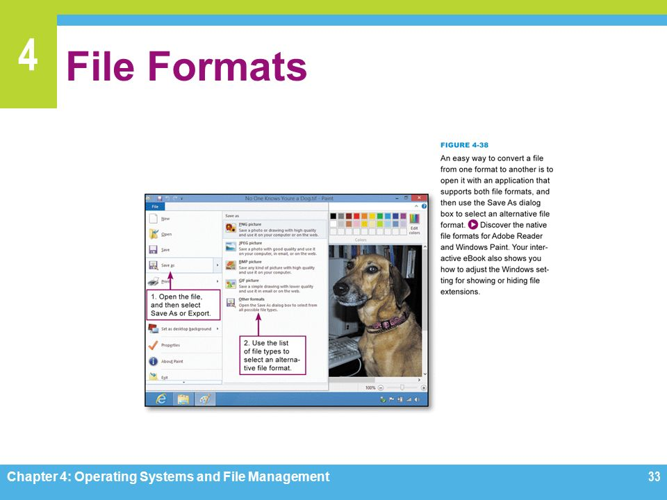 4 File Formats Chapter 4: Operating Systems and File Management33