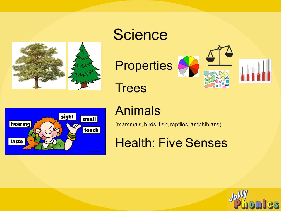 Science Properties Trees Animals (mammals, birds, fish, reptiles, amphibians) Health: Five Senses
