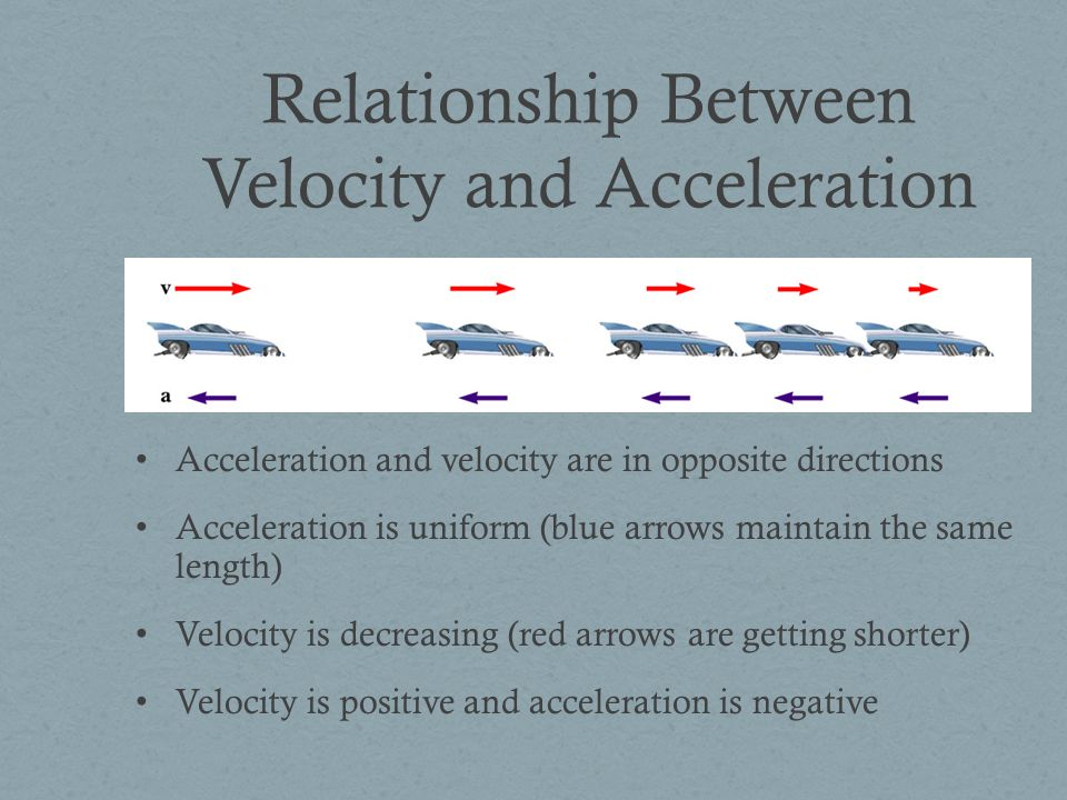 Relationship Between Velocity and Acceleration Acceleration and velocity are in opposite directions Acceleration is uniform (blue arrows maintain the same length) Velocity is decreasing (red arrows are getting shorter) Velocity is positive and acceleration is negative