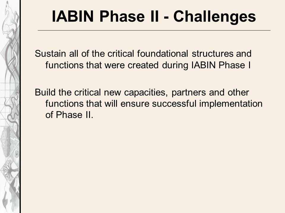 IABIN Phase II - Challenges Sustain all of the critical foundational structures and functions that were created during IABIN Phase I Build the critical new capacities, partners and other functions that will ensure successful implementation of Phase II.