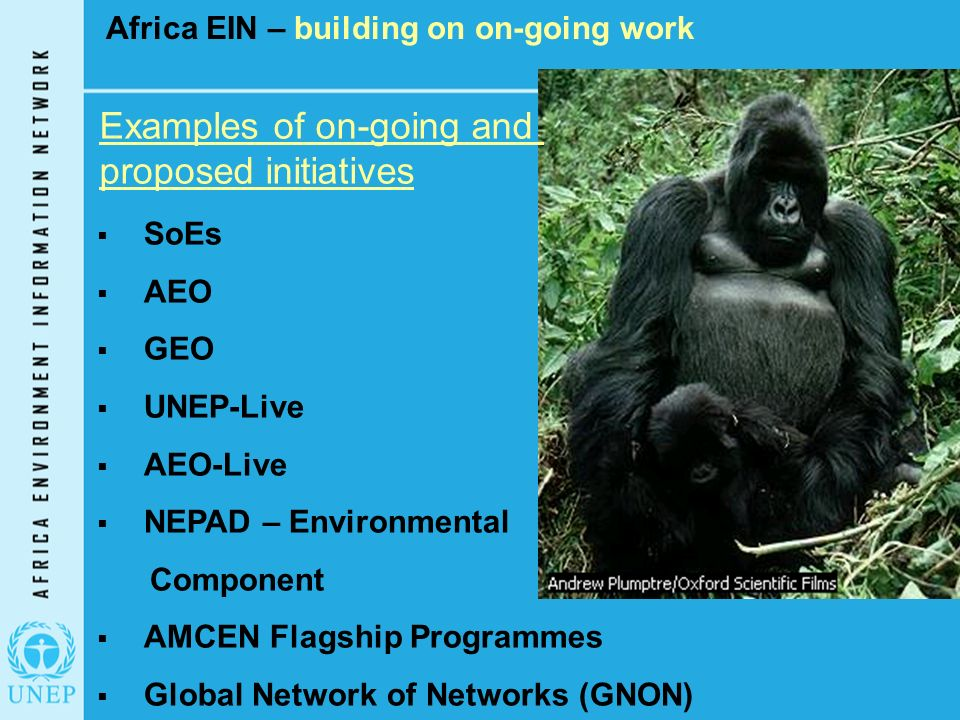 Africa EIN – building on on-going work Examples of on-going and proposed initiatives  SoEs  AEO  GEO  UNEP-Live  AEO-Live  NEPAD – Environmental Component  AMCEN Flagship Programmes  Global Network of Networks (GNON)