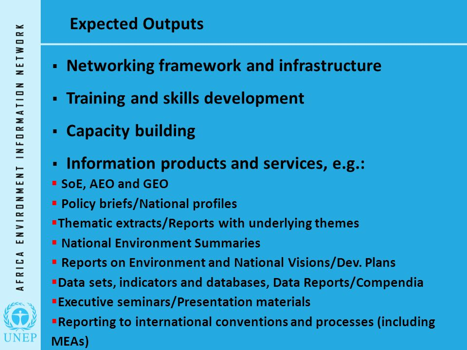 Expected Outputs  Networking framework and infrastructure  Training and skills development  Capacity building  Information products and services, e.g.:  SoE, AEO and GEO  Policy briefs/National profiles  Thematic extracts/Reports with underlying themes  National Environment Summaries  Reports on Environment and National Visions/Dev.