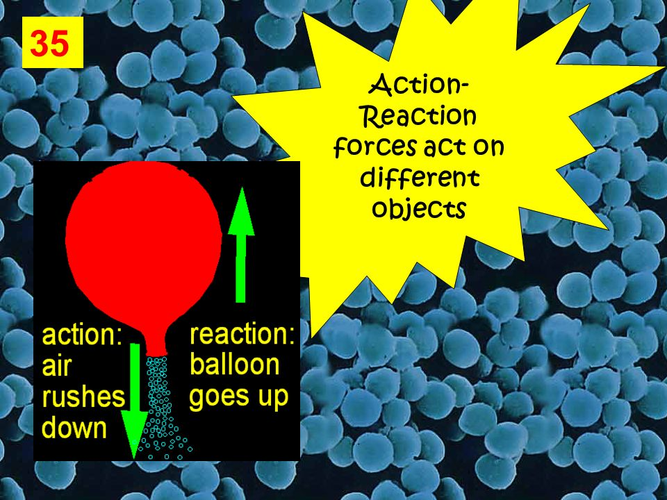 35 Action- Reaction forces act on different objects