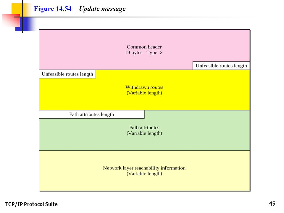 TCP/IP Protocol Suite 45 Figure Update message