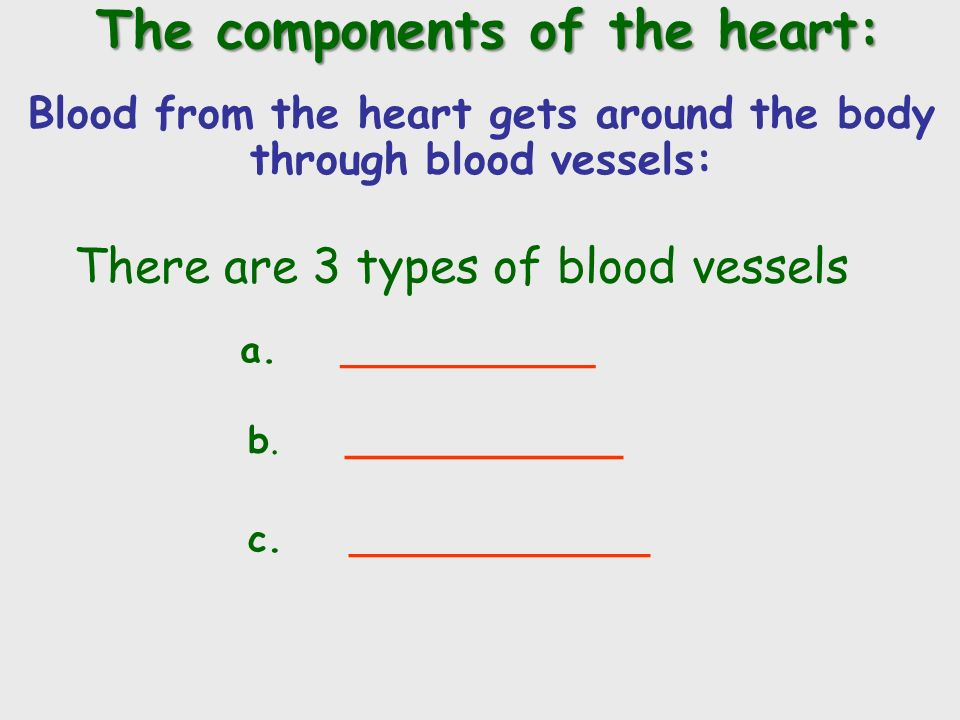 Blood from the heart gets around the body through blood vessels: There are 3 types of blood vessels a.