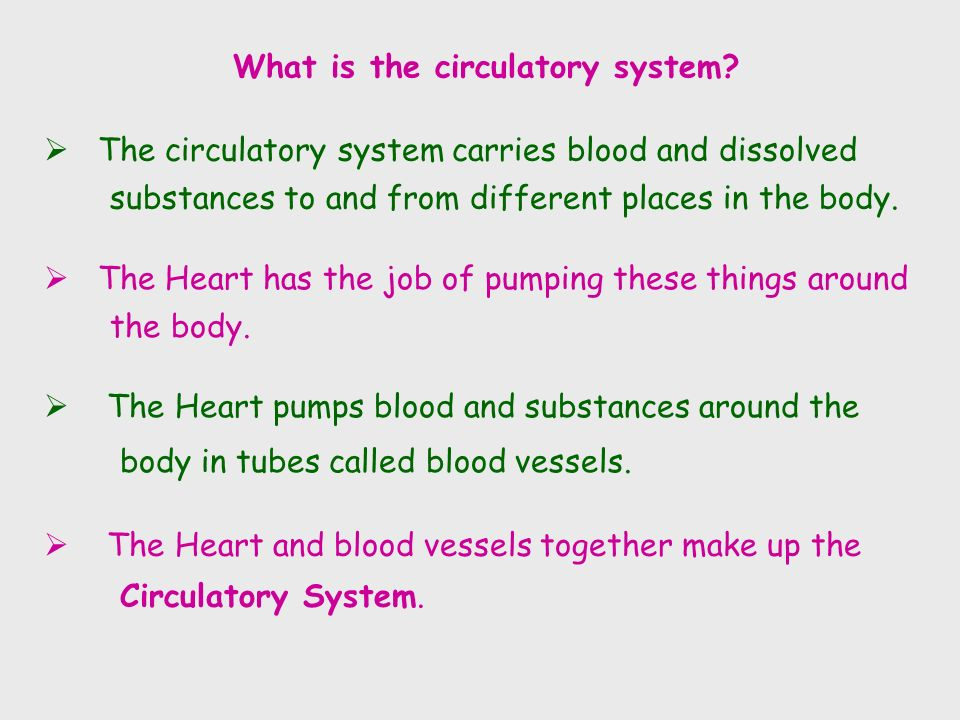  The circulatory system carries blood and dissolved substances to and from different places in the body.