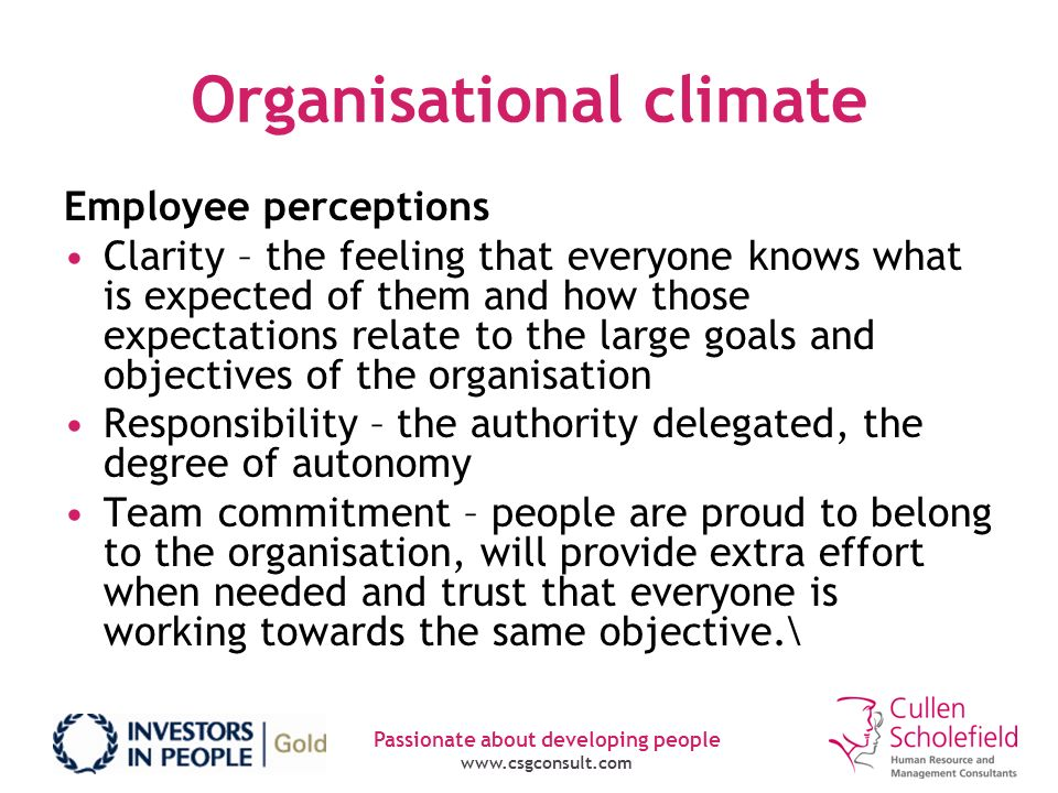 Passionate about developing people www.csgconsult.com Organisational climate Employee perceptions Clarity – the feeling that everyone knows what is ex