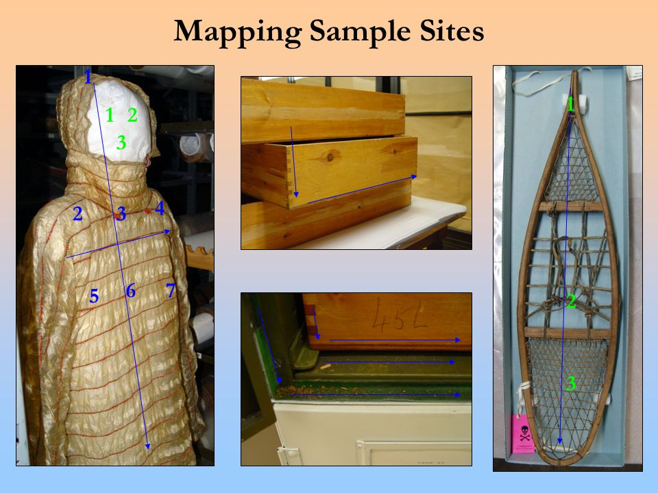 Mapping Sample Sites 12 3 1 23 4 5 67 1 2 3