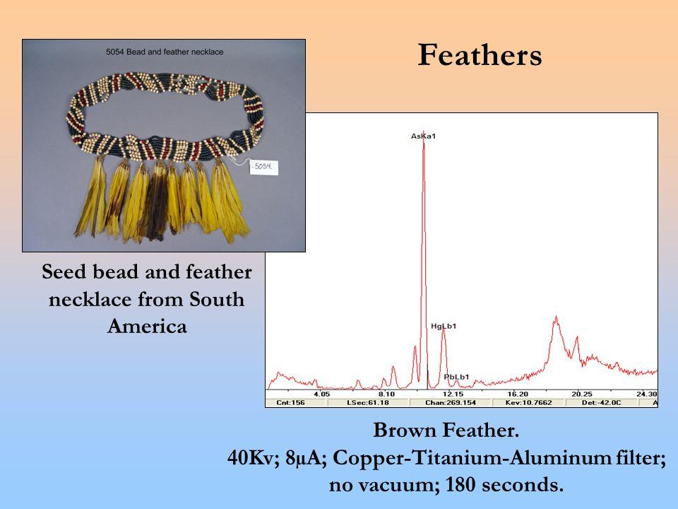 Brown Feather. 40Kv; 8µA; Copper-Titanium-Aluminum filter; no vacuum; 180 seconds.