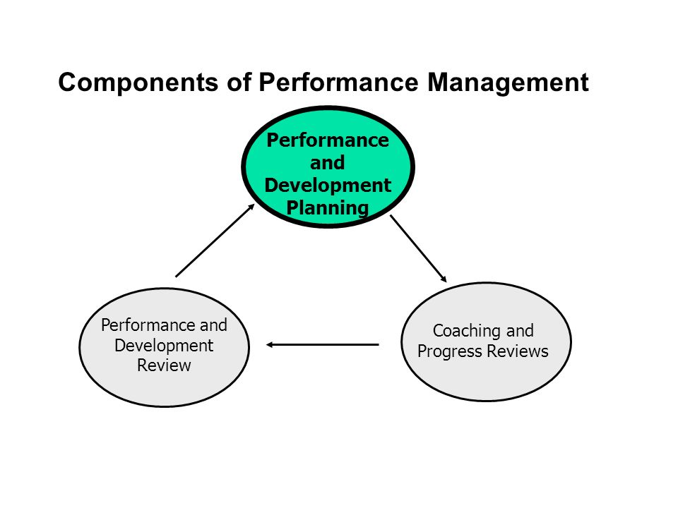Components of Performance Management Performance and Development Planning Coaching and Progress Reviews Performance and Development Review