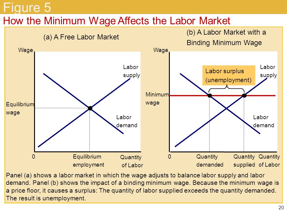 supply and demand of labor during Demand for labor is not influenced by minimum wage a refresher in the basic economic theories of supply and demand by f-16s during.