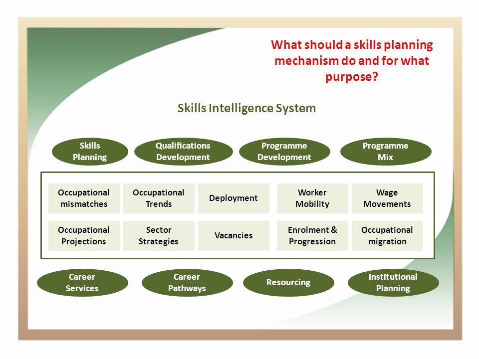 What should a skills planning mechanism do and for what purpose.