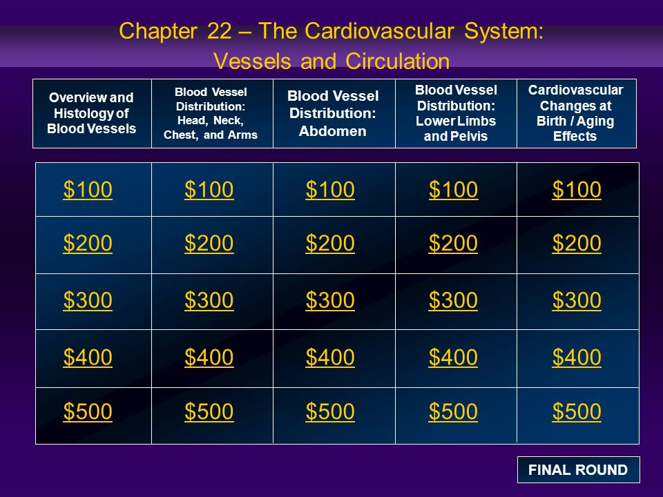 Chapter 22 – The Cardiovascular System: Vessels and Circulation $100 $200 $300 $400 $500 $100$100$100 $200 $300 $400 $500 Overview and Histology of Blood Vessels Blood Vessel Distribution: Head, Neck, Chest, and Arms Blood Vessel Distribution: Abdomen Blood Vessel Distribution: Lower Limbs and Pelvis Cardiovascular Changes at Birth / Aging Effects FINAL ROUND