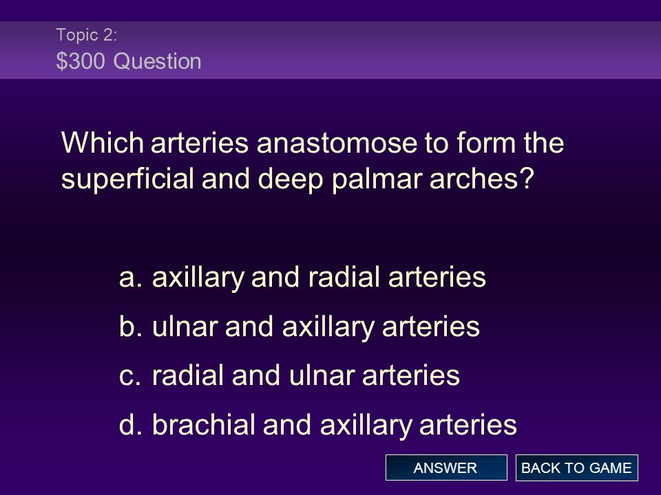 Topic 2: $300 Question Which arteries anastomose to form the superficial and deep palmar arches.