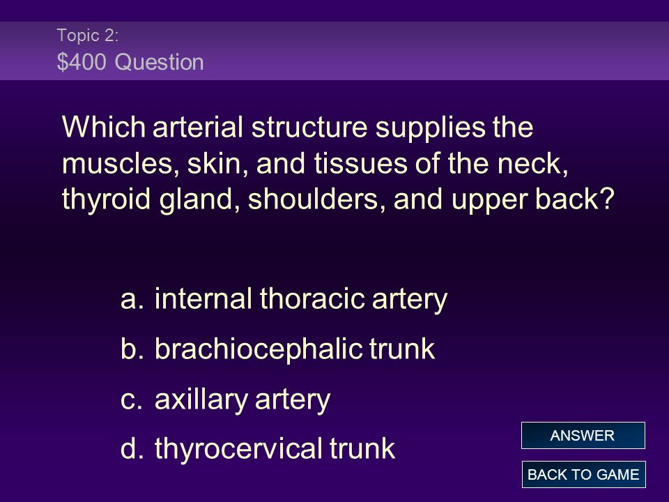 Topic 2: $400 Question Which arterial structure supplies the muscles, skin, and tissues of the neck, thyroid gland, shoulders, and upper back.
