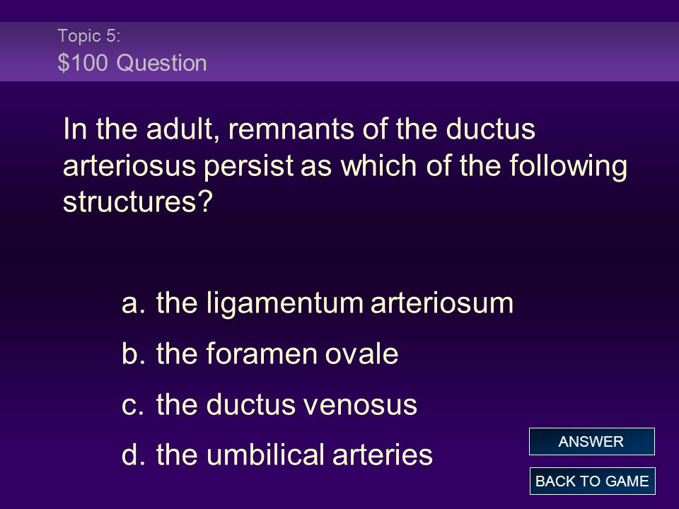 Topic 5: $100 Question In the adult, remnants of the ductus arteriosus persist as which of the following structures.