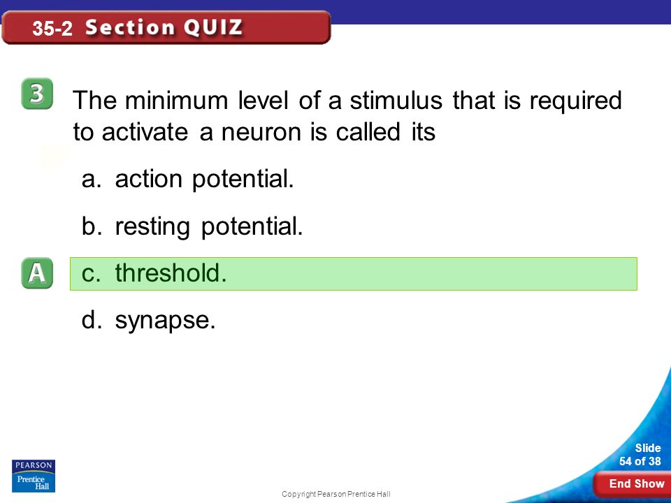 End Show Slide 54 of 38 Copyright Pearson Prentice Hall 35-2 The minimum level of a stimulus that is required to activate a neuron is called its a.action potential.