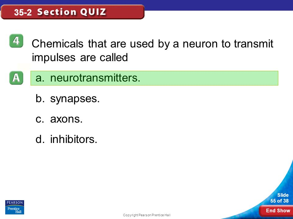 End Show Slide 55 of 38 Copyright Pearson Prentice Hall 35-2 Chemicals that are used by a neuron to transmit impulses are called a.neurotransmitters.