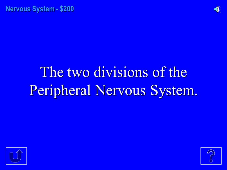 Nervous System - $100 What two things make up the nervous system