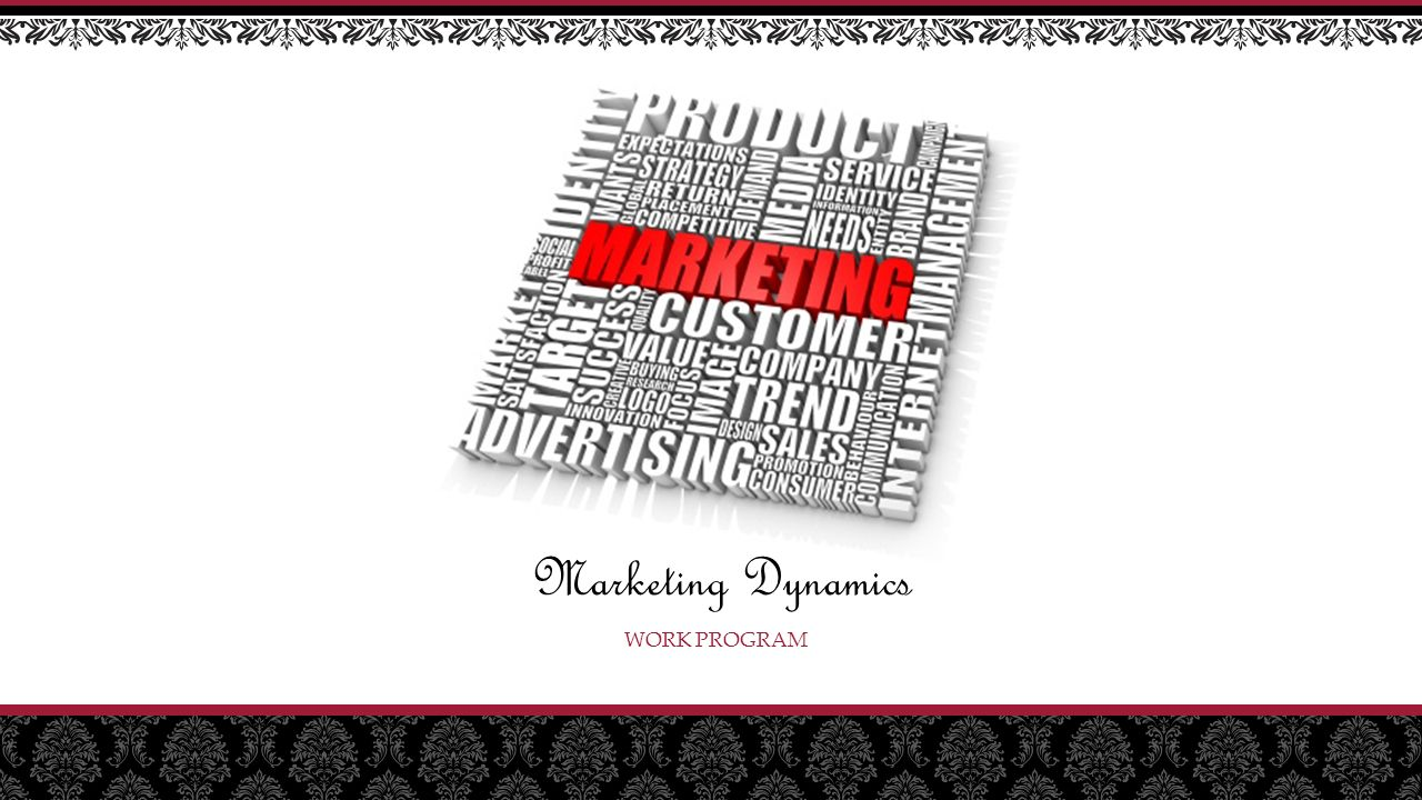 WORK PROGRAM Marketing Dynamics