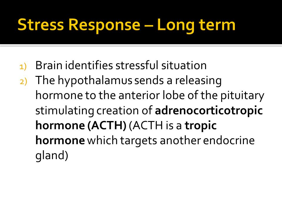 1) Brain identifies stressful situation 2) The hypothalamus sends a releasing hormone to the anterior lobe of the pituitary stimulating creation of adrenocorticotropic hormone (ACTH) (ACTH is a tropic hormone which targets another endocrine gland)