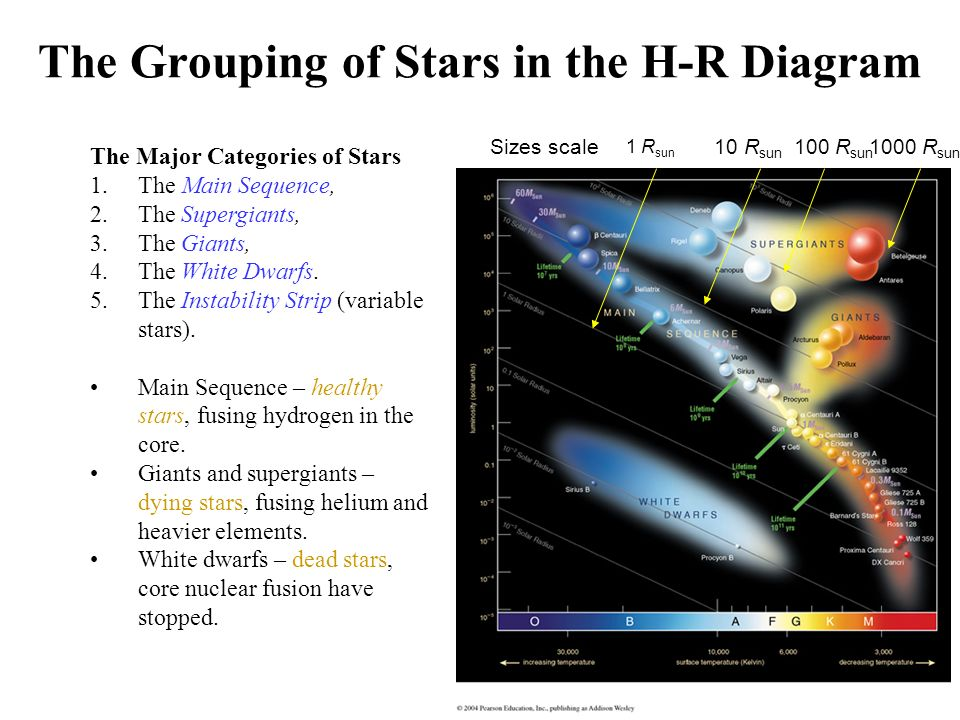 The Grouping of Stars in the H-R Diagram The Major Categories of ...