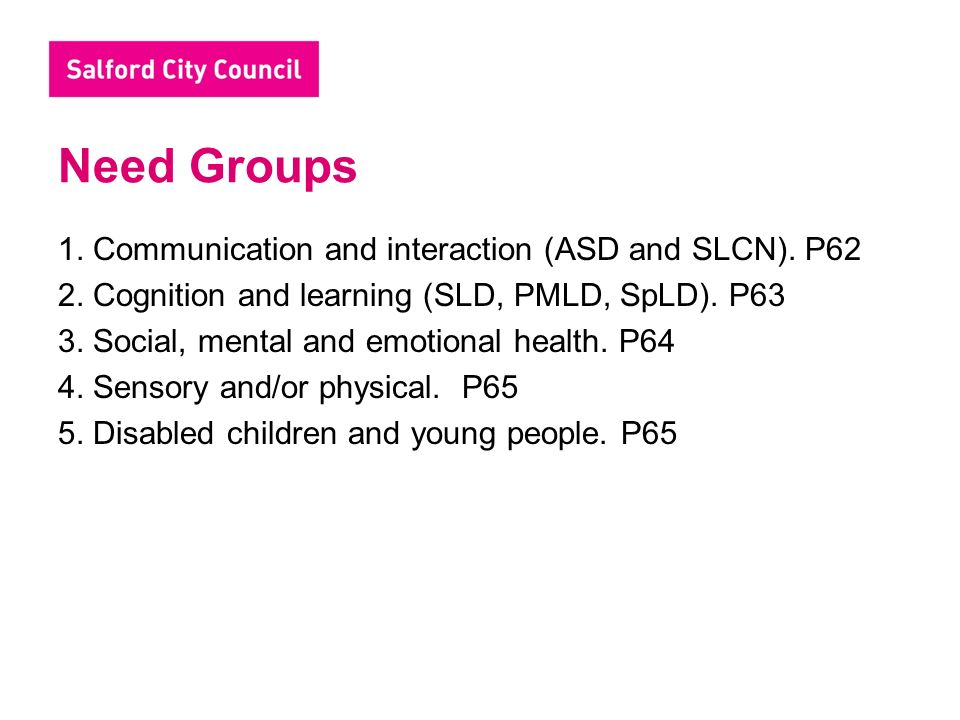 Need Groups 1. Communication and interaction (ASD and SLCN).