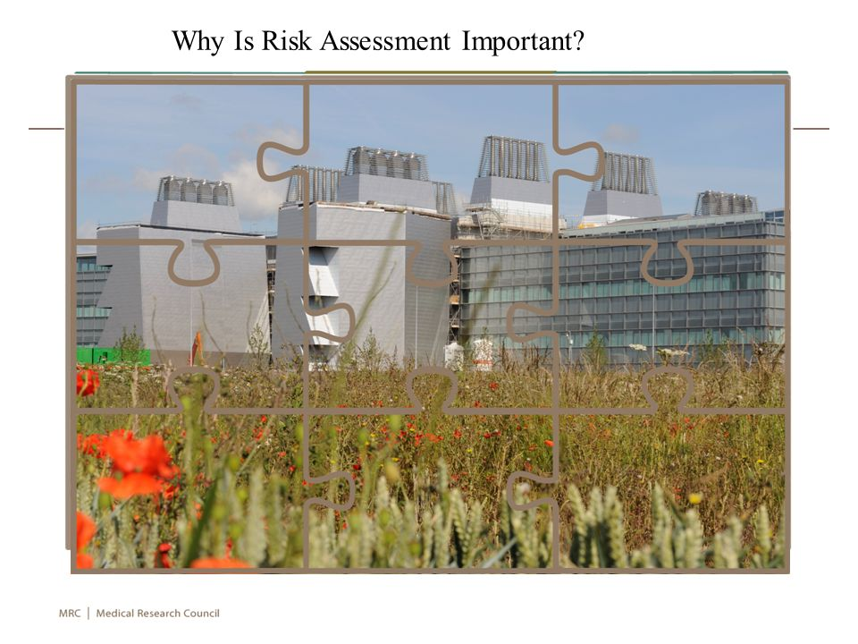 Why Is Risk Assessment Important
