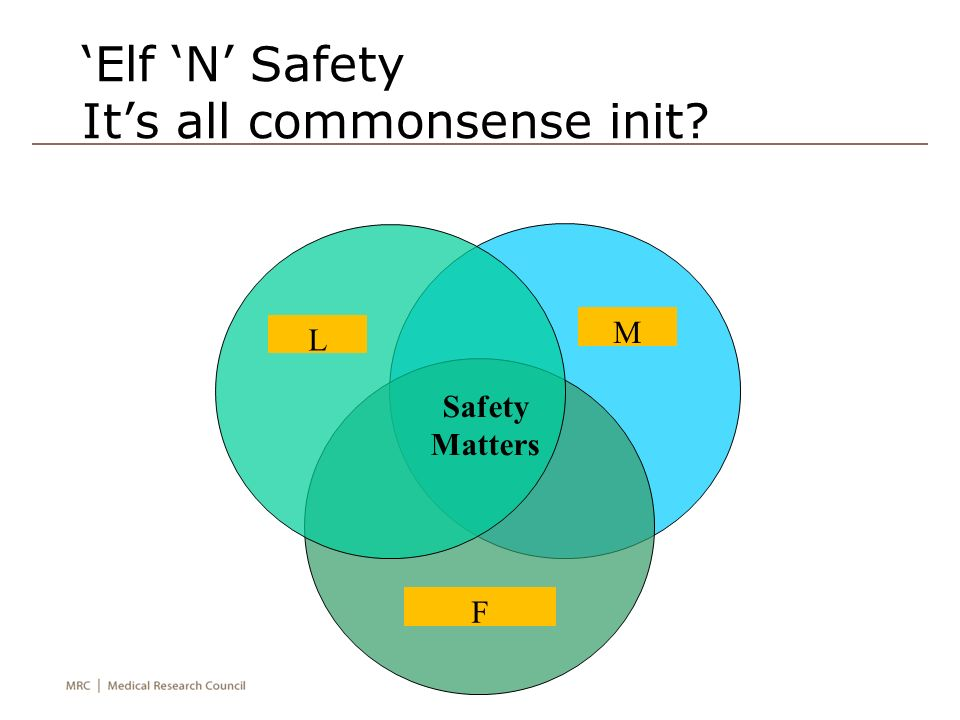 'Elf 'N' Safety It's all commonsense init Legal Moral Financial Safety Matters L M F