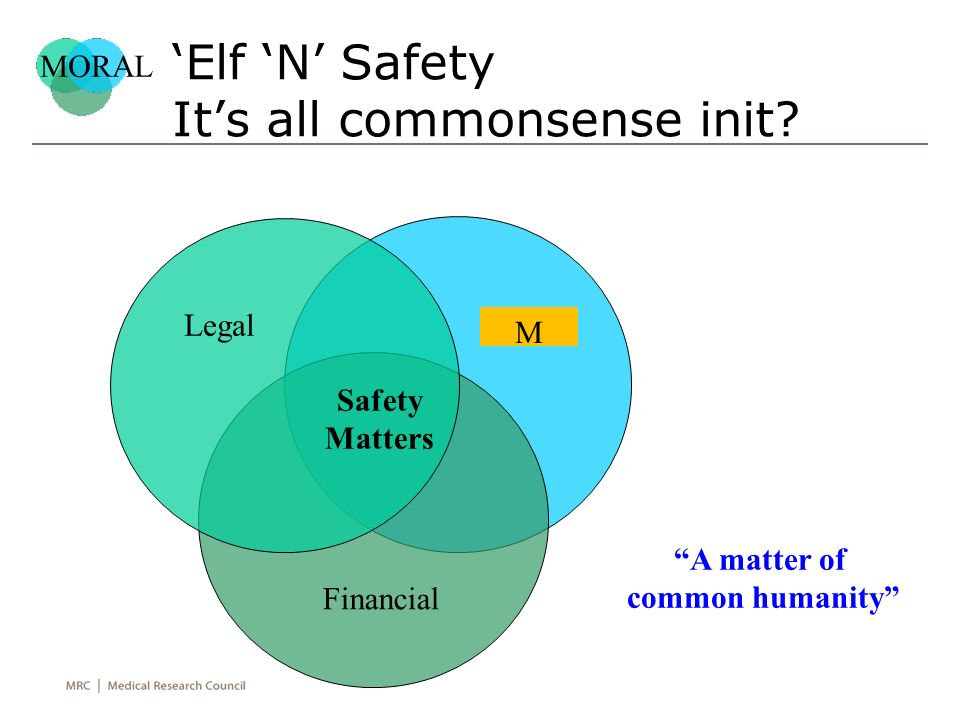 'Elf 'N' Safety It's all commonsense init.