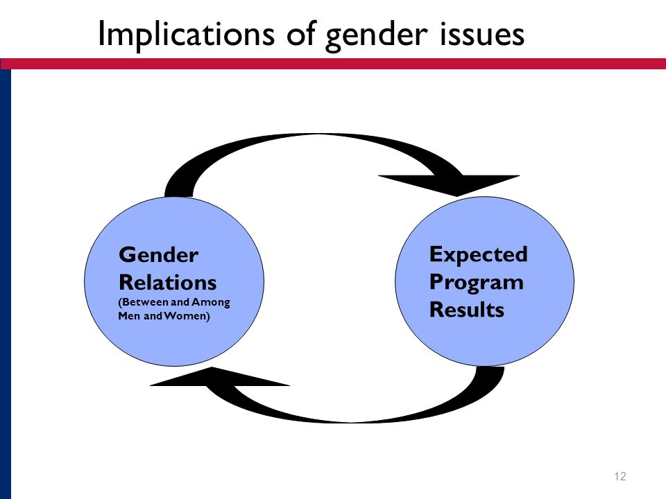 Implications of gender issues Gender Relations (Between and Among Men and Women) Expected Program Results 12